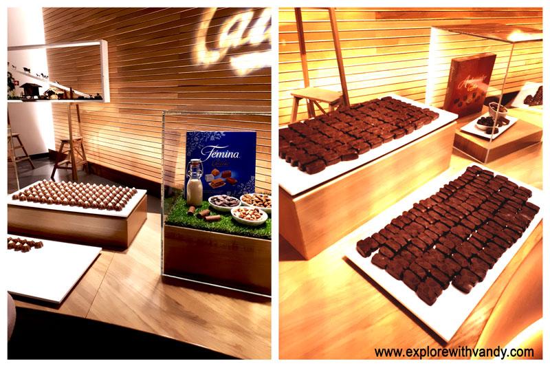 chocolate tasting room