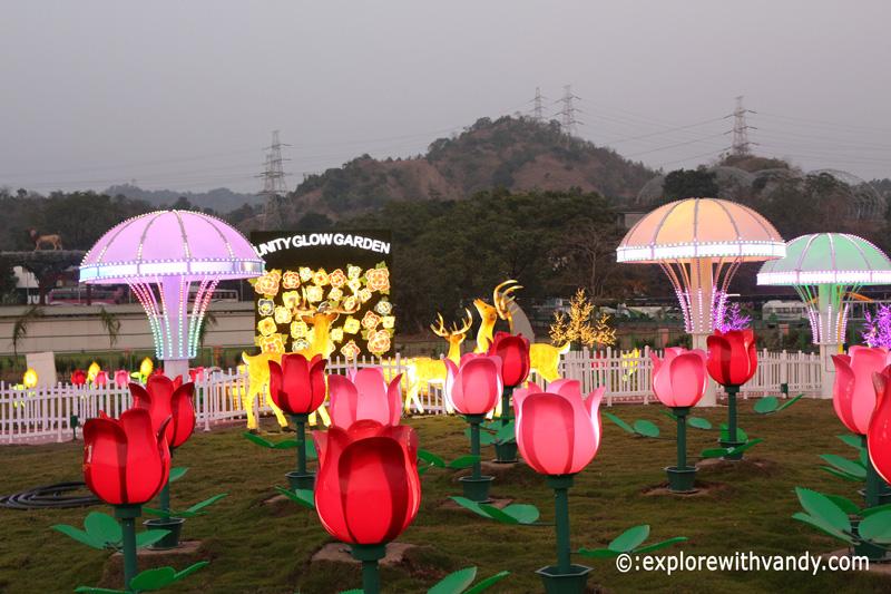 Glow Garden at SOU